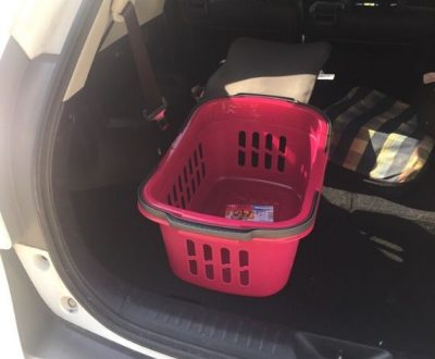 Einkaufsfahrten - Einfach und bequem liefern lassen